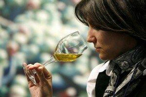 cata de aceite de oliva im 300x199 Los Paradigmas del Aceite de Oliva